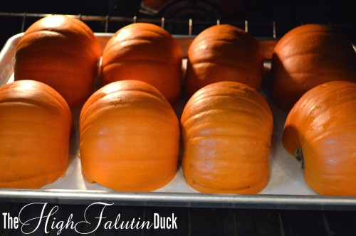 Pumpkins Roasting
